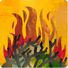 image of branches being burned in a pile